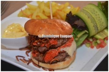 The famous Tandoori Insect Burger, by Cook & Roll