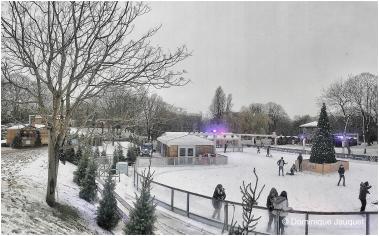 Winter in het Park.
