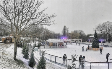 Winter in het Park.