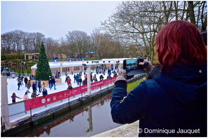 © Dominique Jauquet - Winter in het Park-17