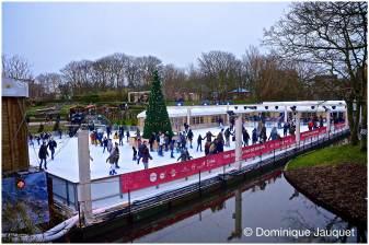 © Dominique Jauquet - Winter in het Park-18