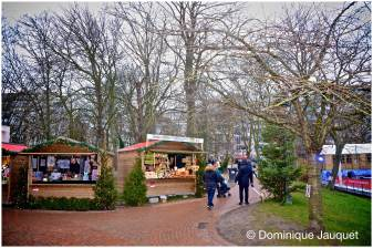 © Dominique Jauquet - Winter in het Park-25