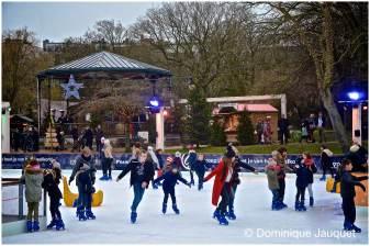© Dominique Jauquet - Winter in het Park-27