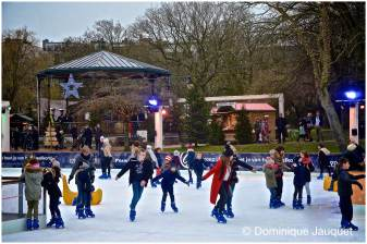 © Dominique Jauquet - Winter in het Park-27
