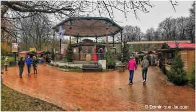 © Dominique Jauquet - Winter in het Park-33
