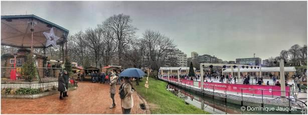 © Dominique Jauquet - Winter in het Park-35