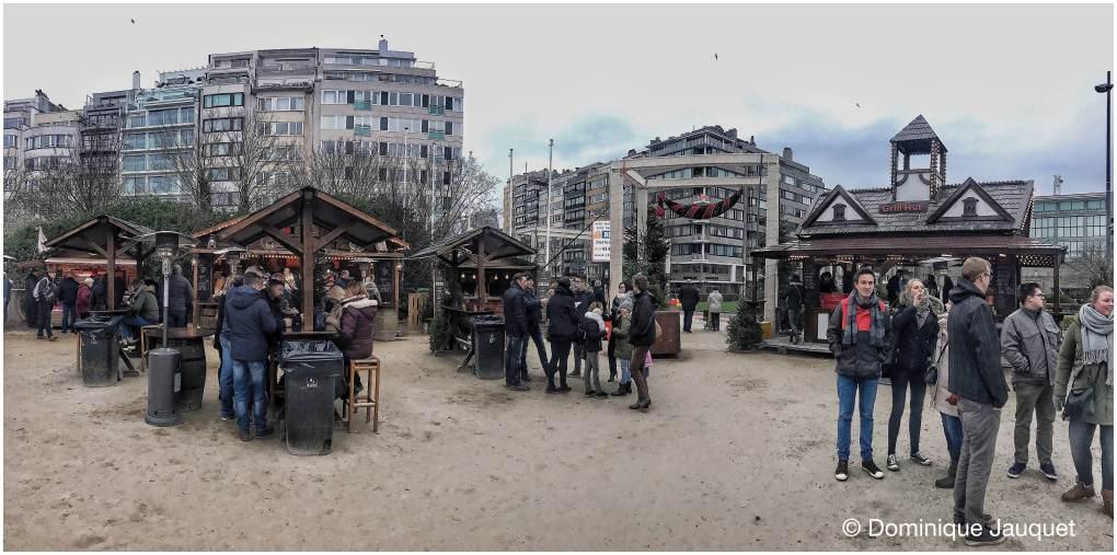 © Dominique Jauquet - Winter in het Park-38