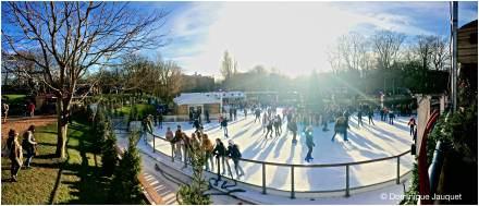 © Dominique Jauquet - Winter in het Park-40
