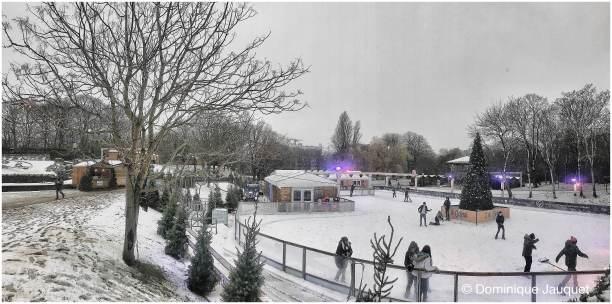 © Dominique Jauquet - Winter in het Park-8
