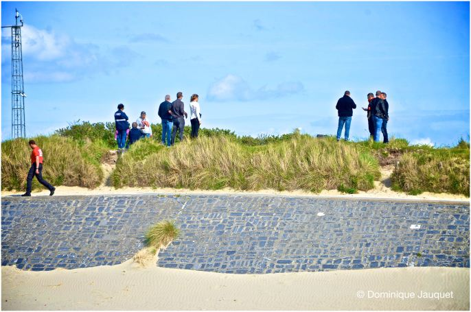 © Dominique Jauquet - zoektocht duinen - 270519-13